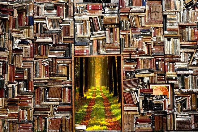 memoires akashiques livre